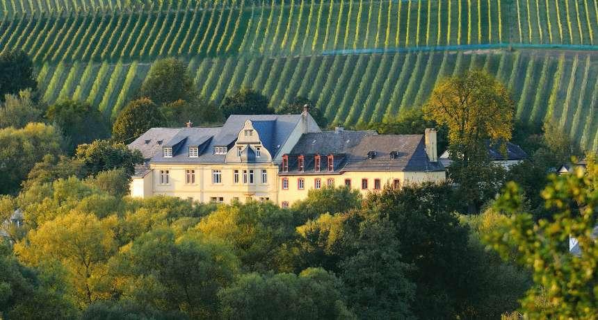 Classisches Weingut Gastehaus Hoffranzen Wein Und Urlaubsort